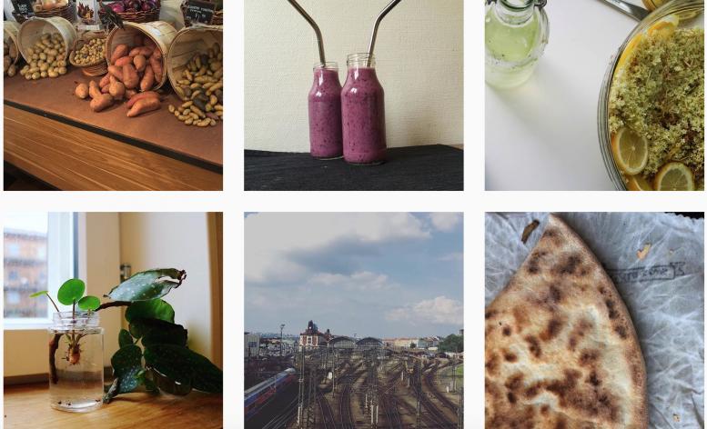 instagram-hildebrandt-sustainable-living-100daysofsustainableliving