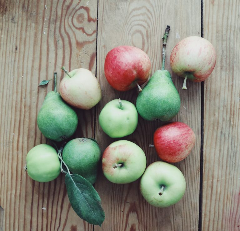 apples-harvest-slow-living-nature