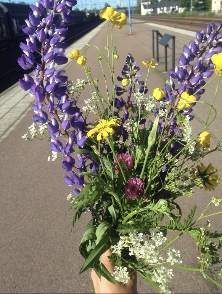 flowers-slow-living-garden-summer